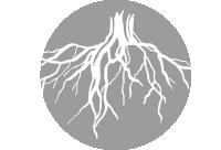 logo-gris