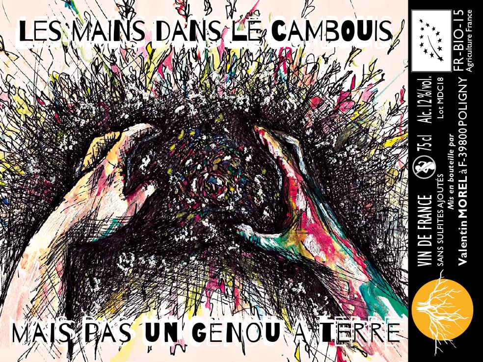 CAMBOUIS-TERRE(1)